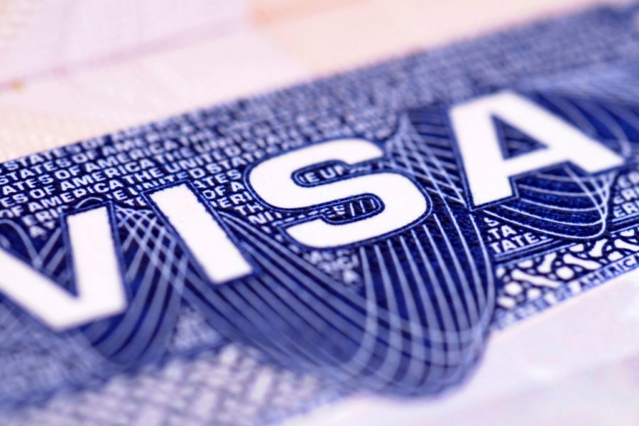 Visa Experts – How to Choose the Best
